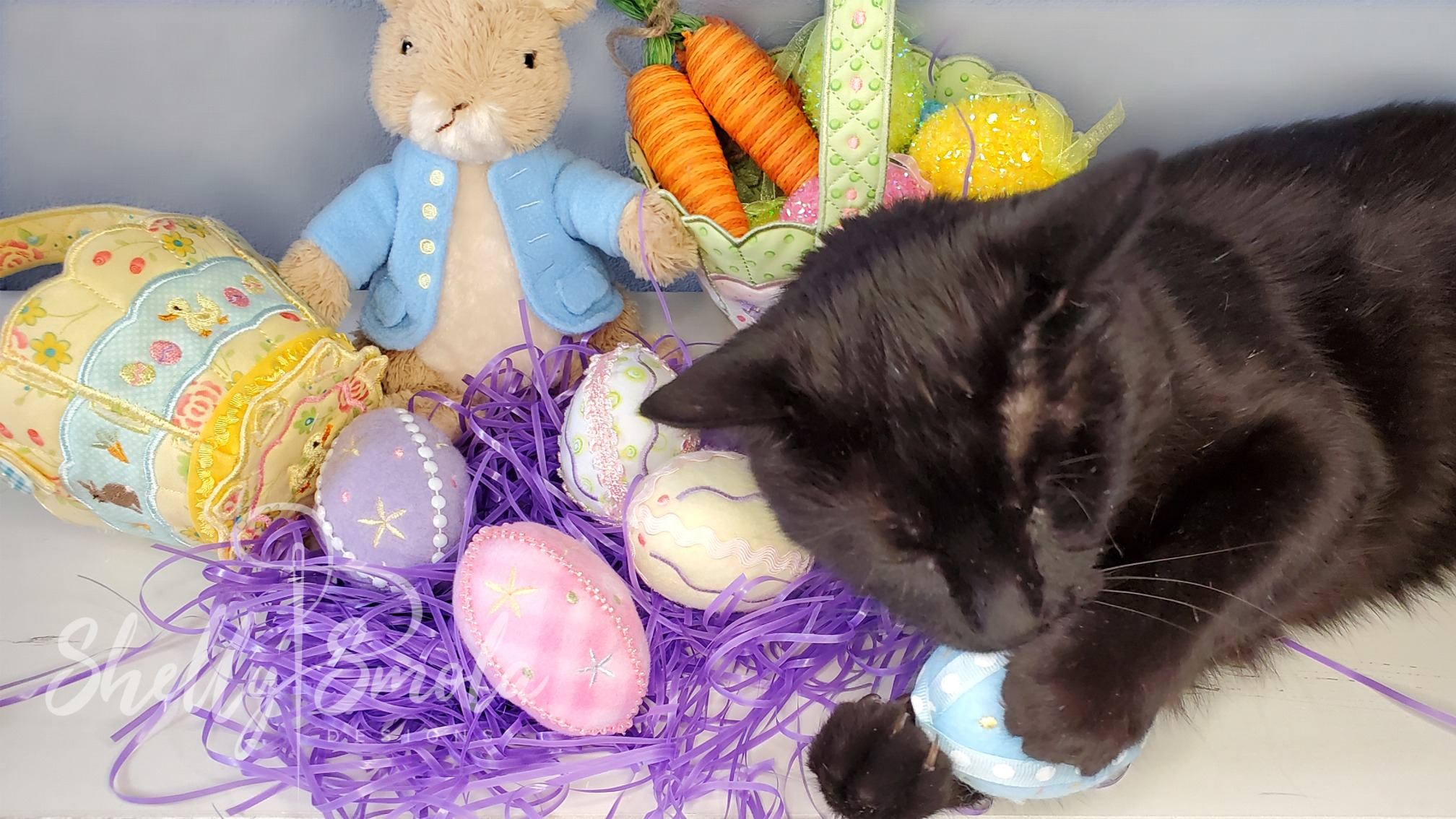 Spooky and the Bunny Basket Eggs by Shelly Smola