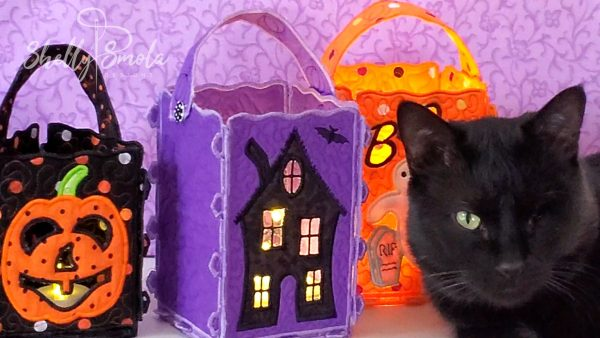 Spooky and the Halloween Lanterns by Shelly Smola