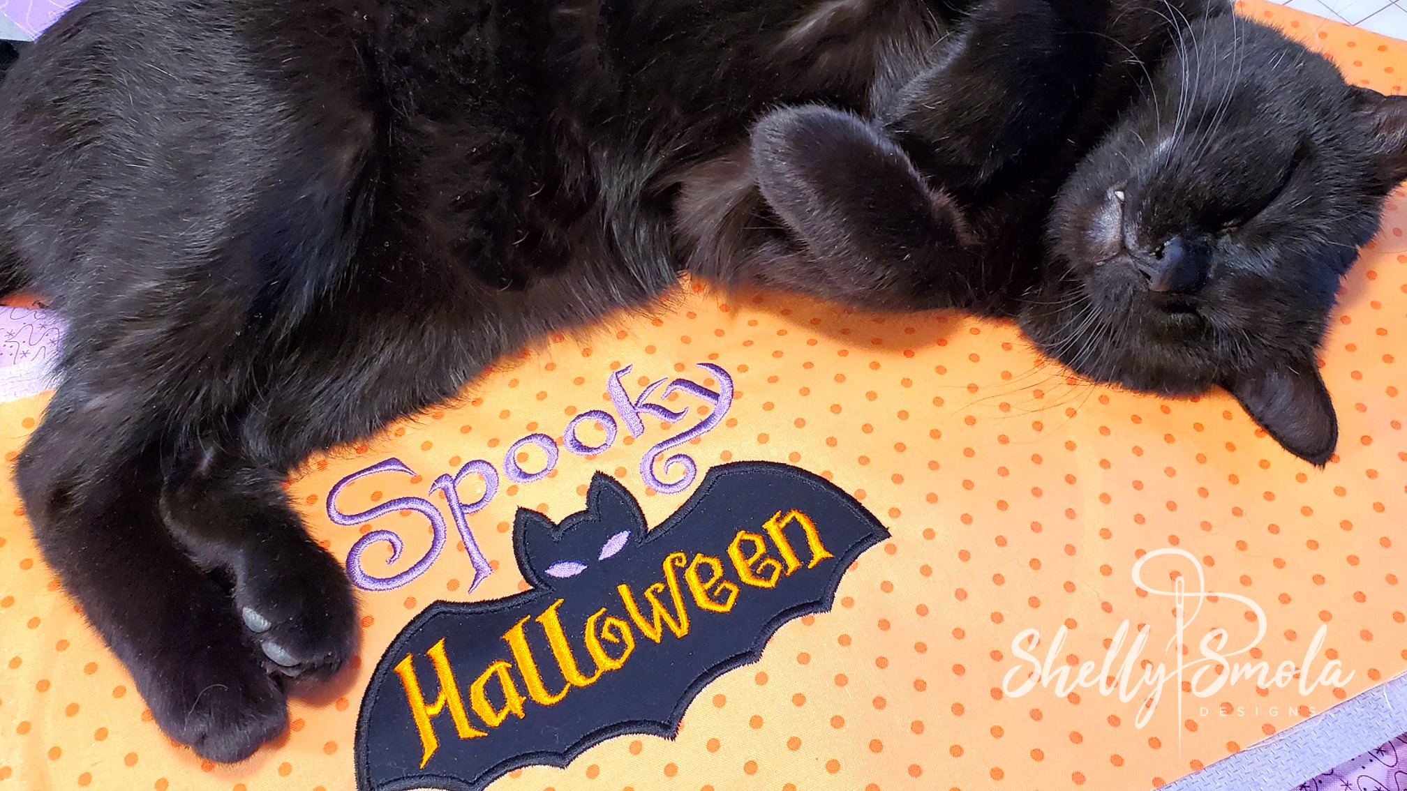 Spooky Halloween and Spooky the Cat by Shelly Smola