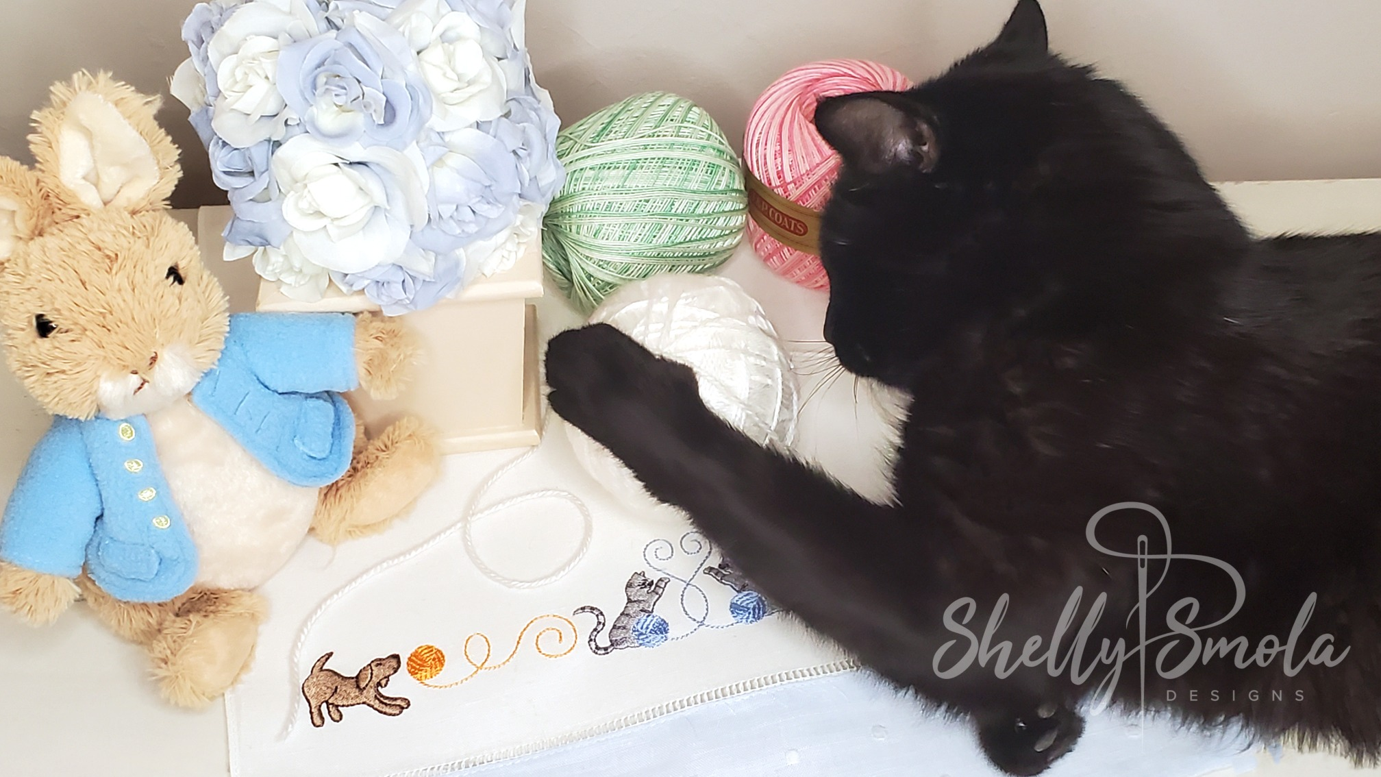 Spooky and the Playful Border by Shelly Smola